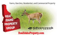 Real Idaho Property, Silvercreek Realty Group
