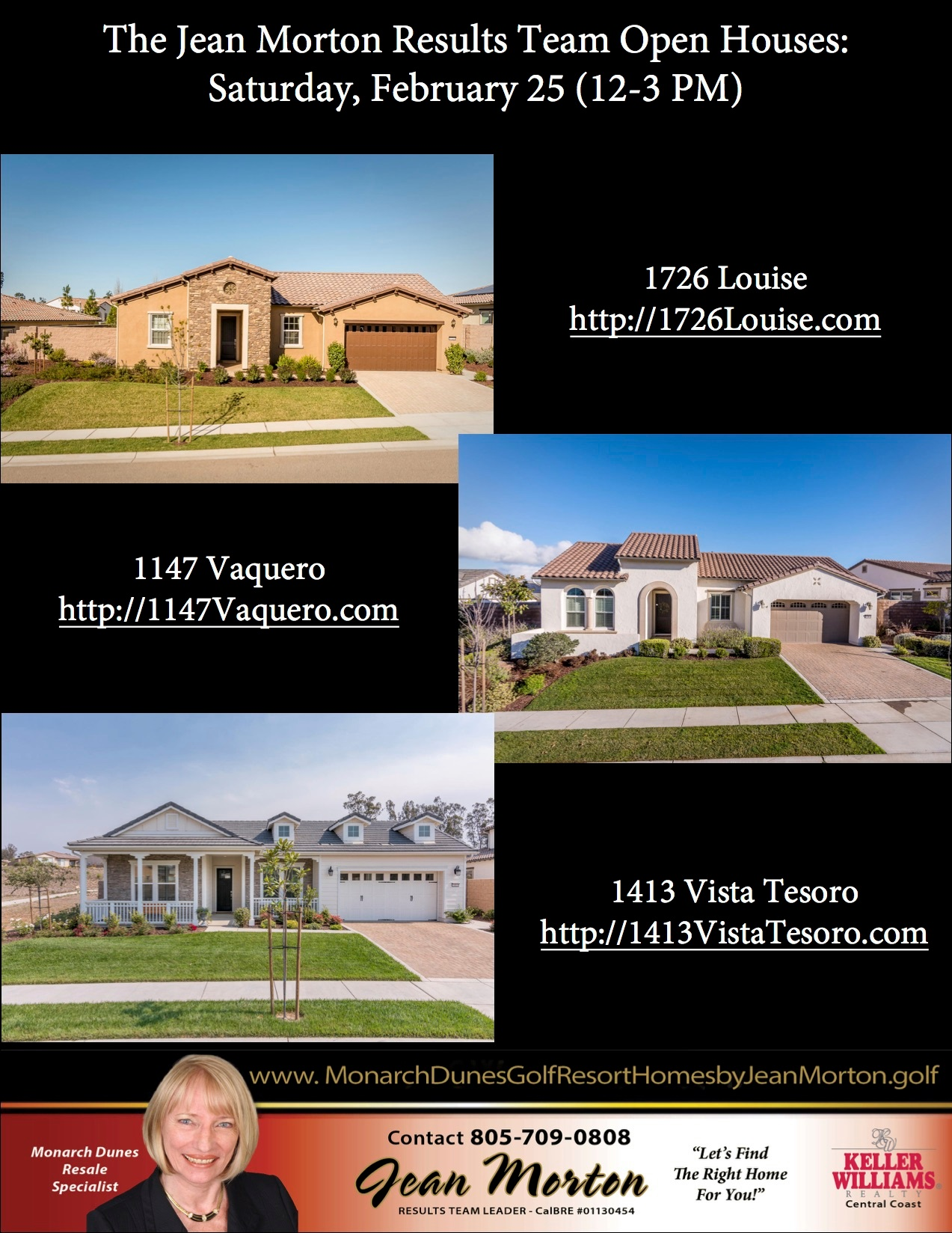 Open Houses 2-25-17 Picture