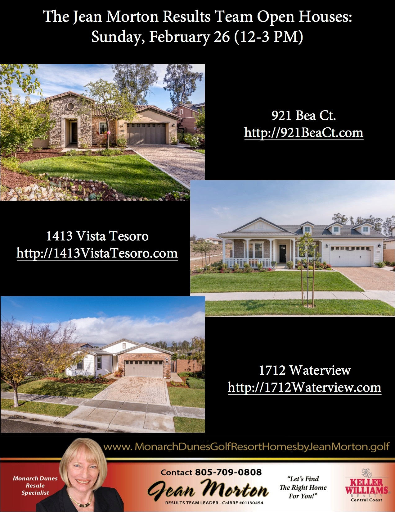 Open Houses 2-26-17 Picture