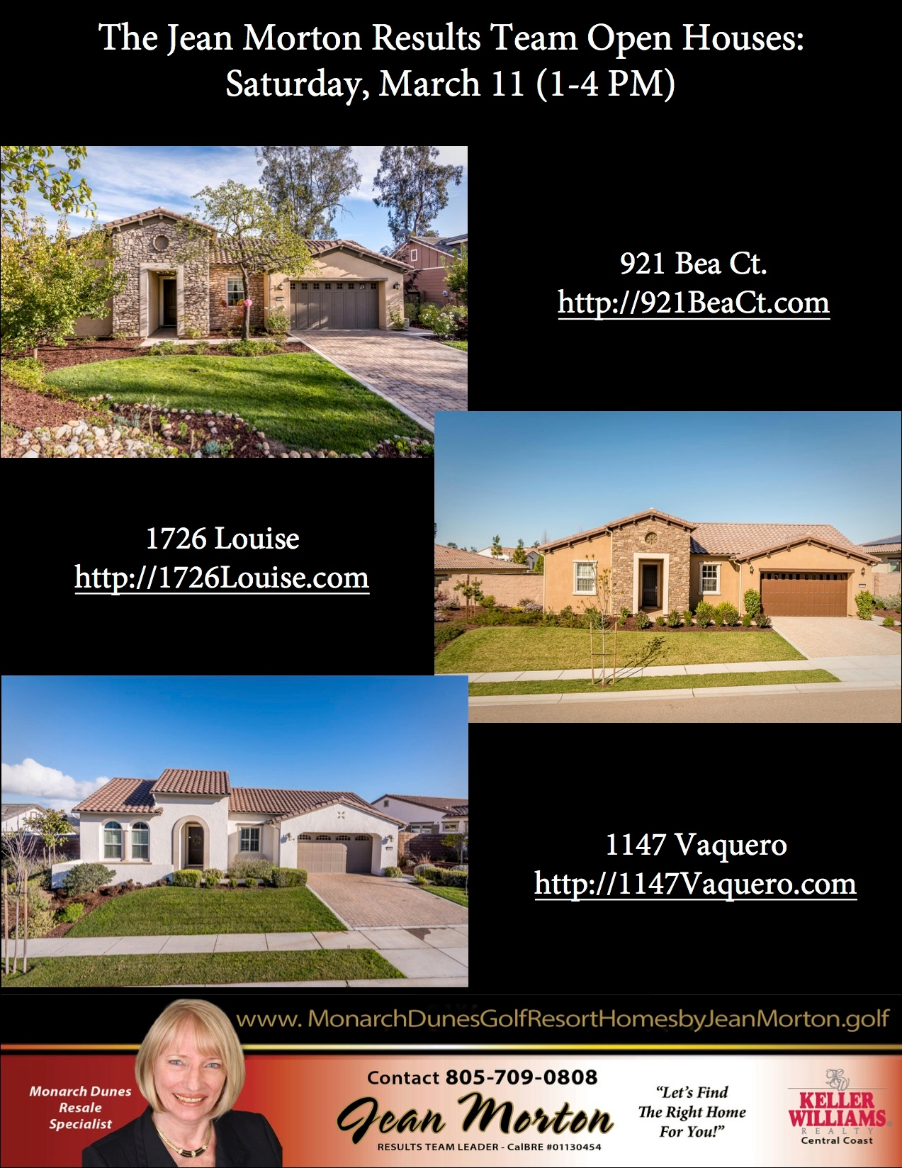 Open Houses 3-11-17 Picture