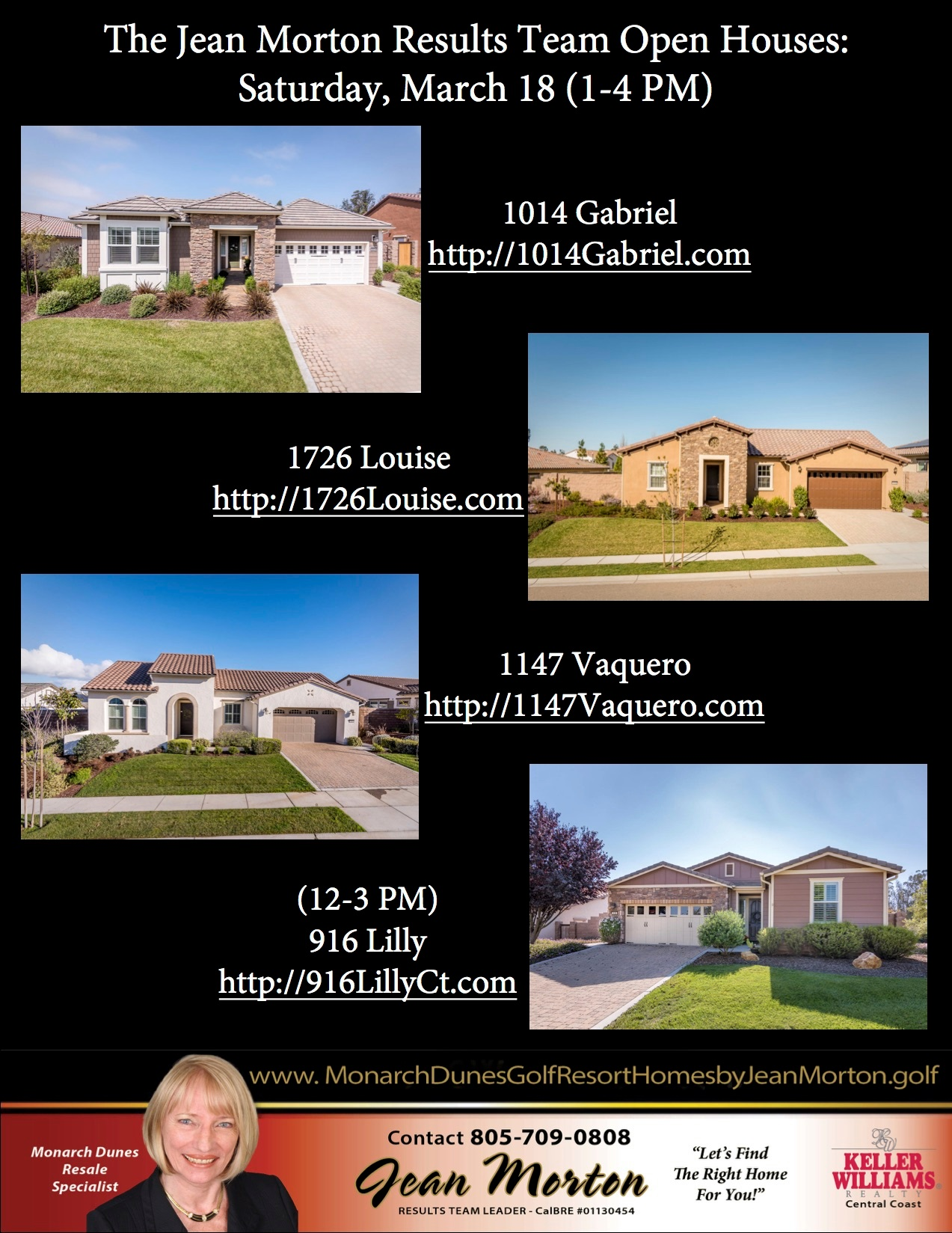 Open Houses 3-18-17 Picture