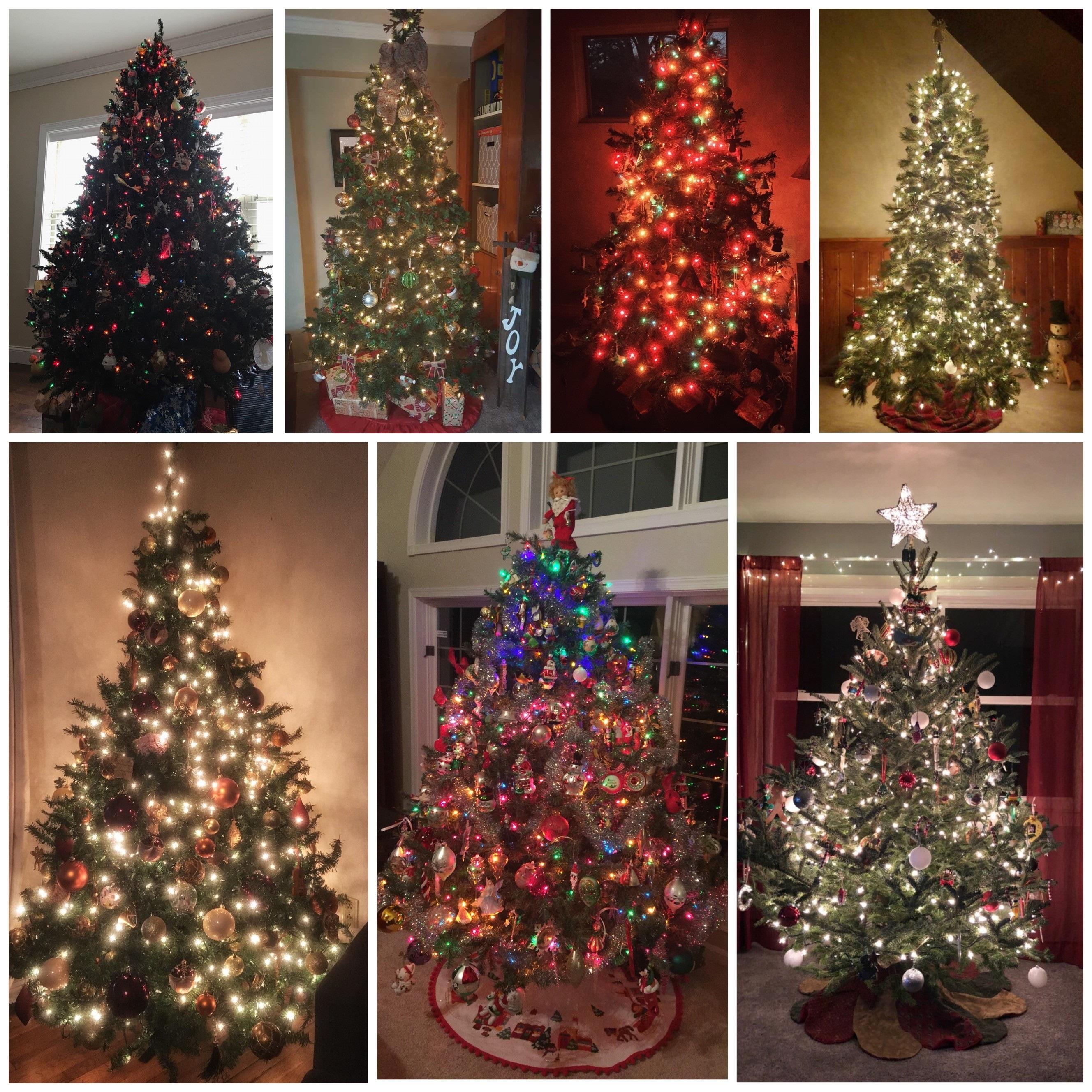 Grow Me Christmas Tree: The History Behind The Christmas Tree