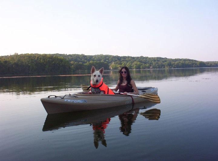 pincot dog kayak