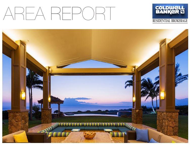 Area Report Header