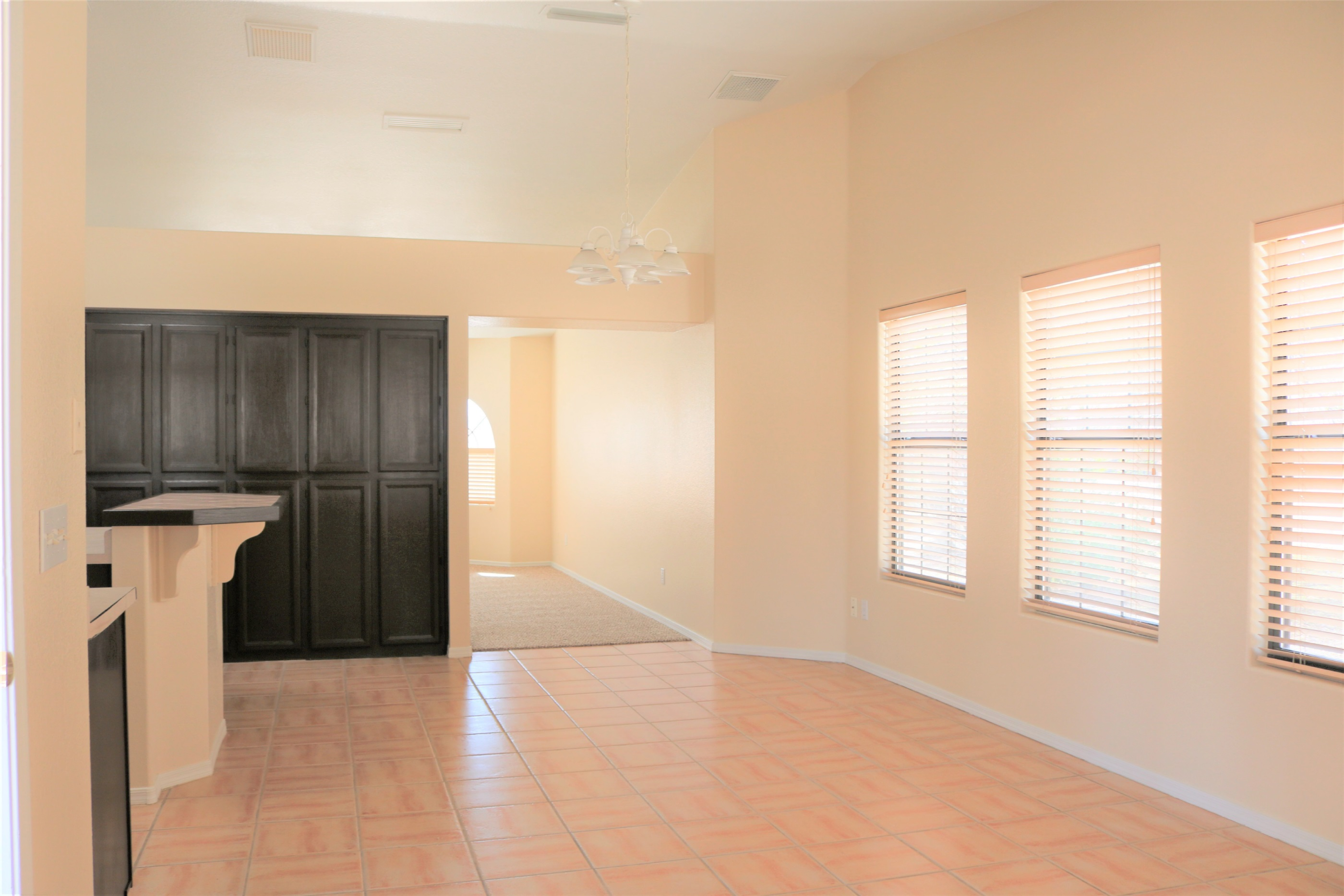 vaulted ceilings in kitchen
