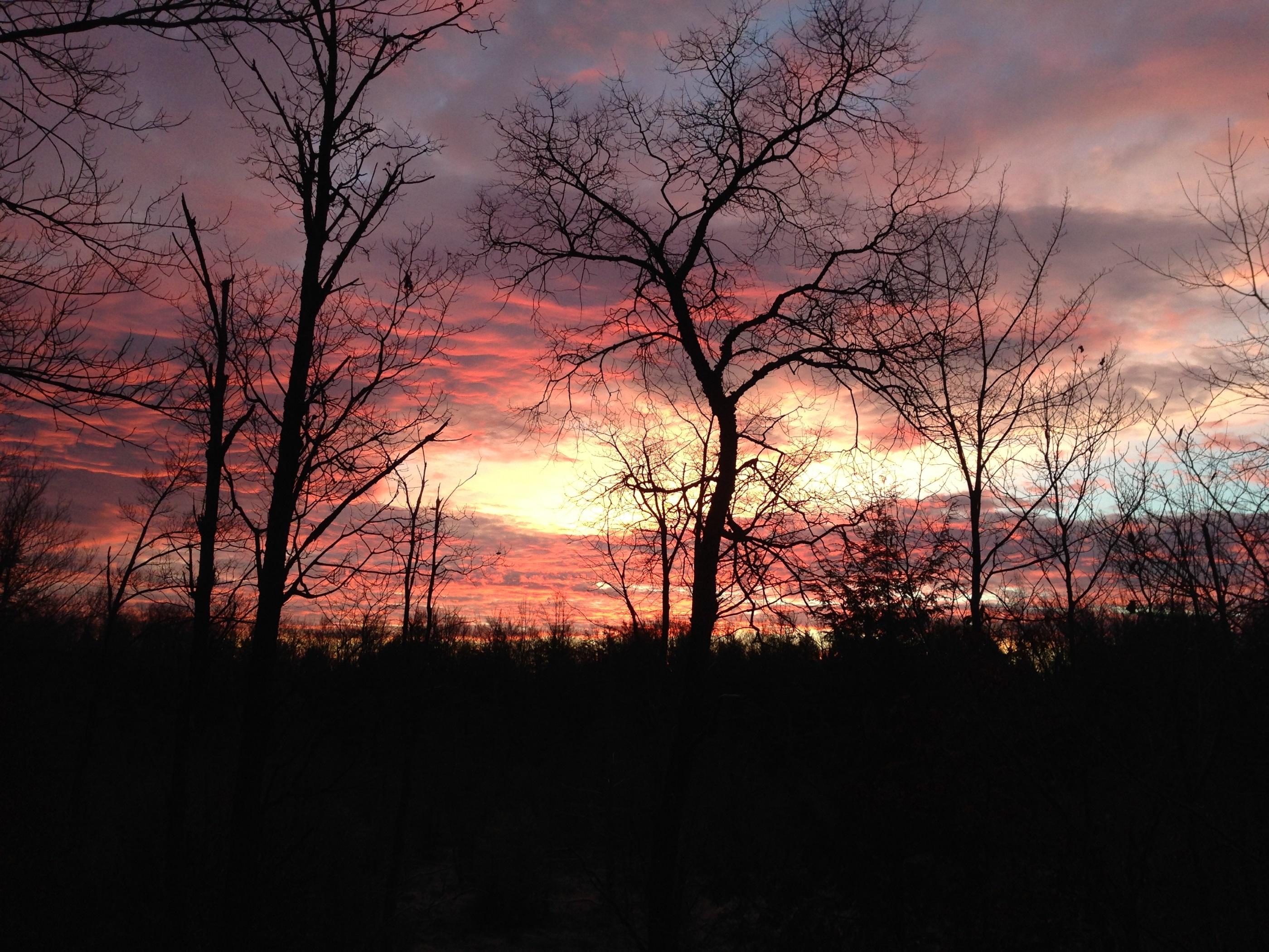 Mechanicsburg Skies