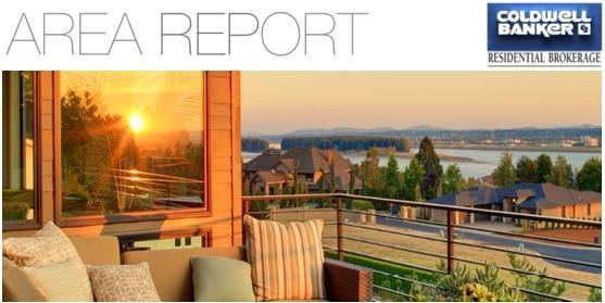 area report