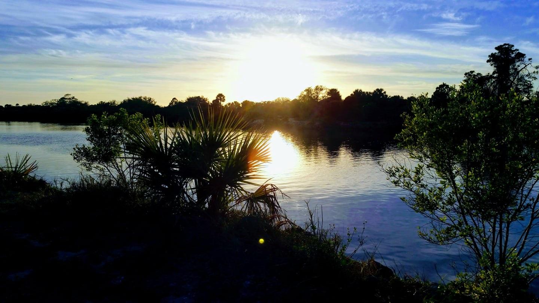 shamrock park waterway