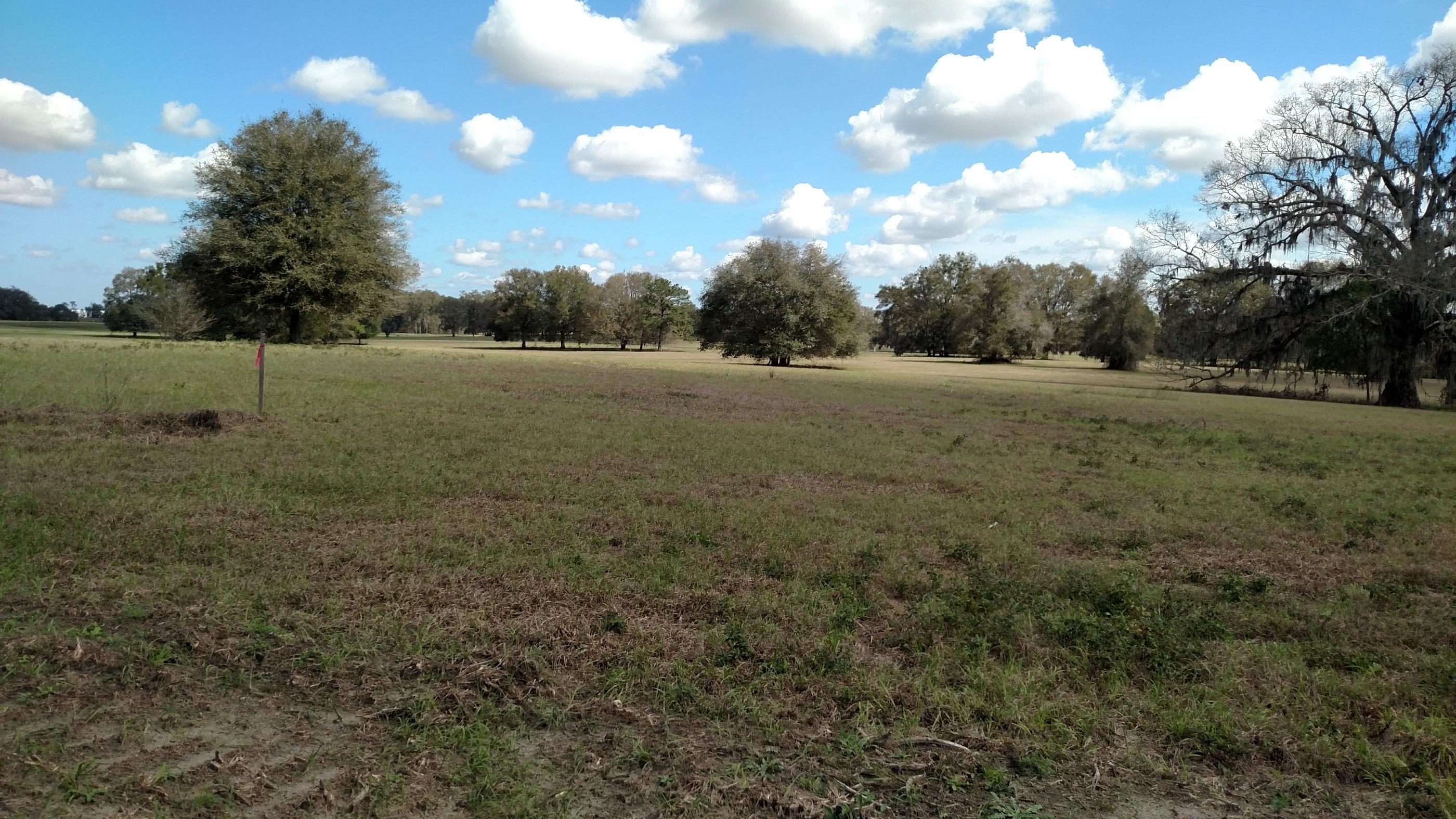 Equestrian estate lot