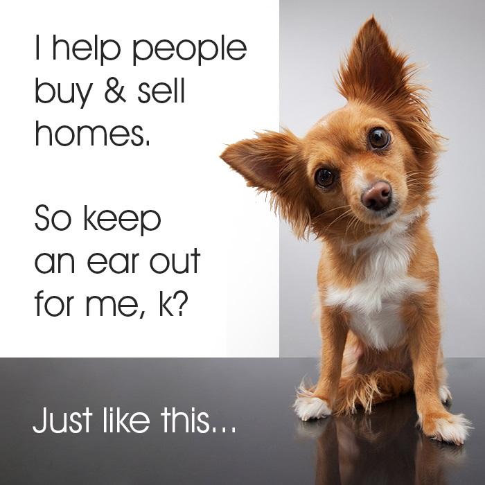 animal-help-buy-sell-solo (2)