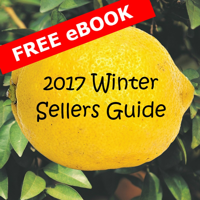 Winter sellers Guide Button