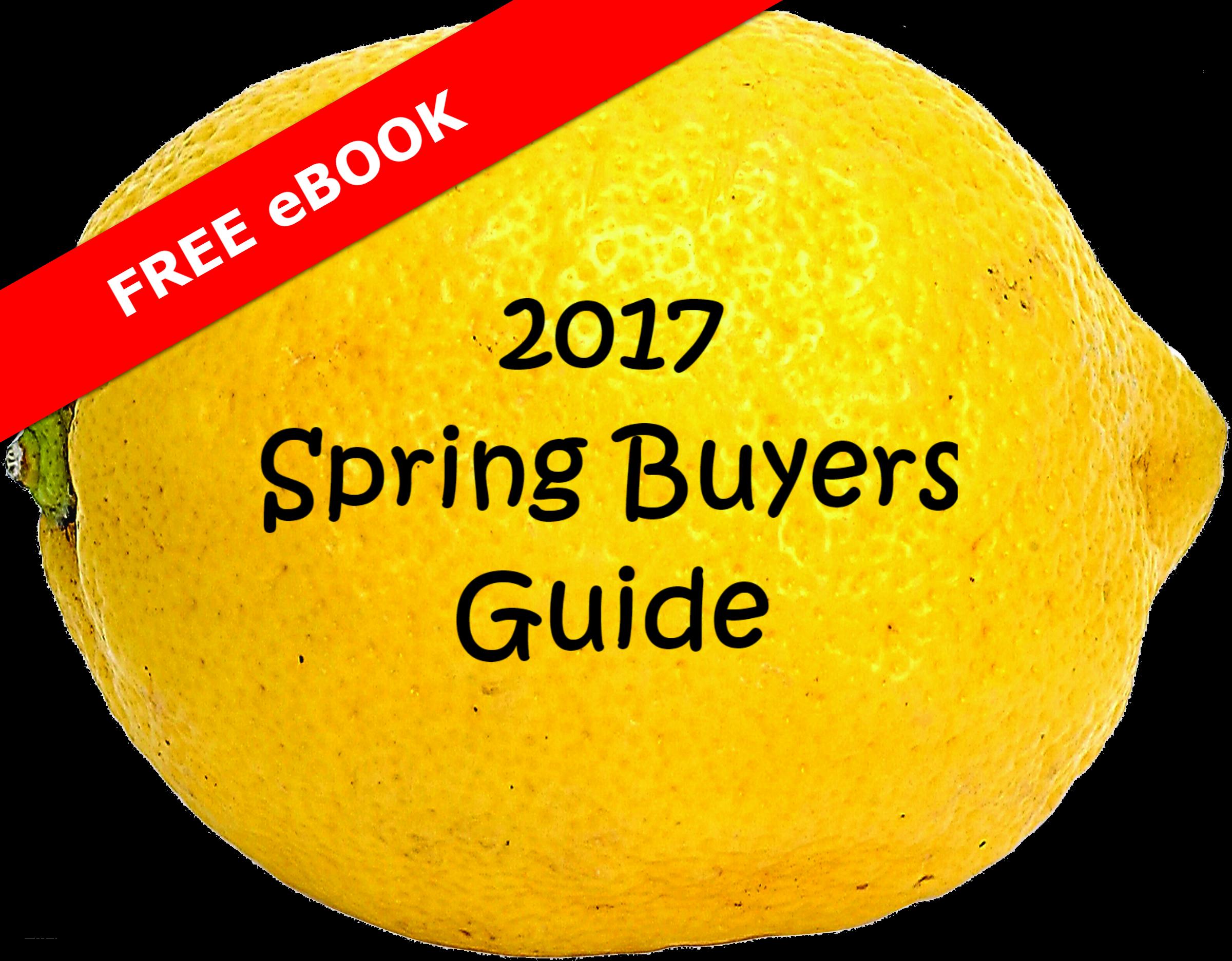 2017 Spring Buying Guide