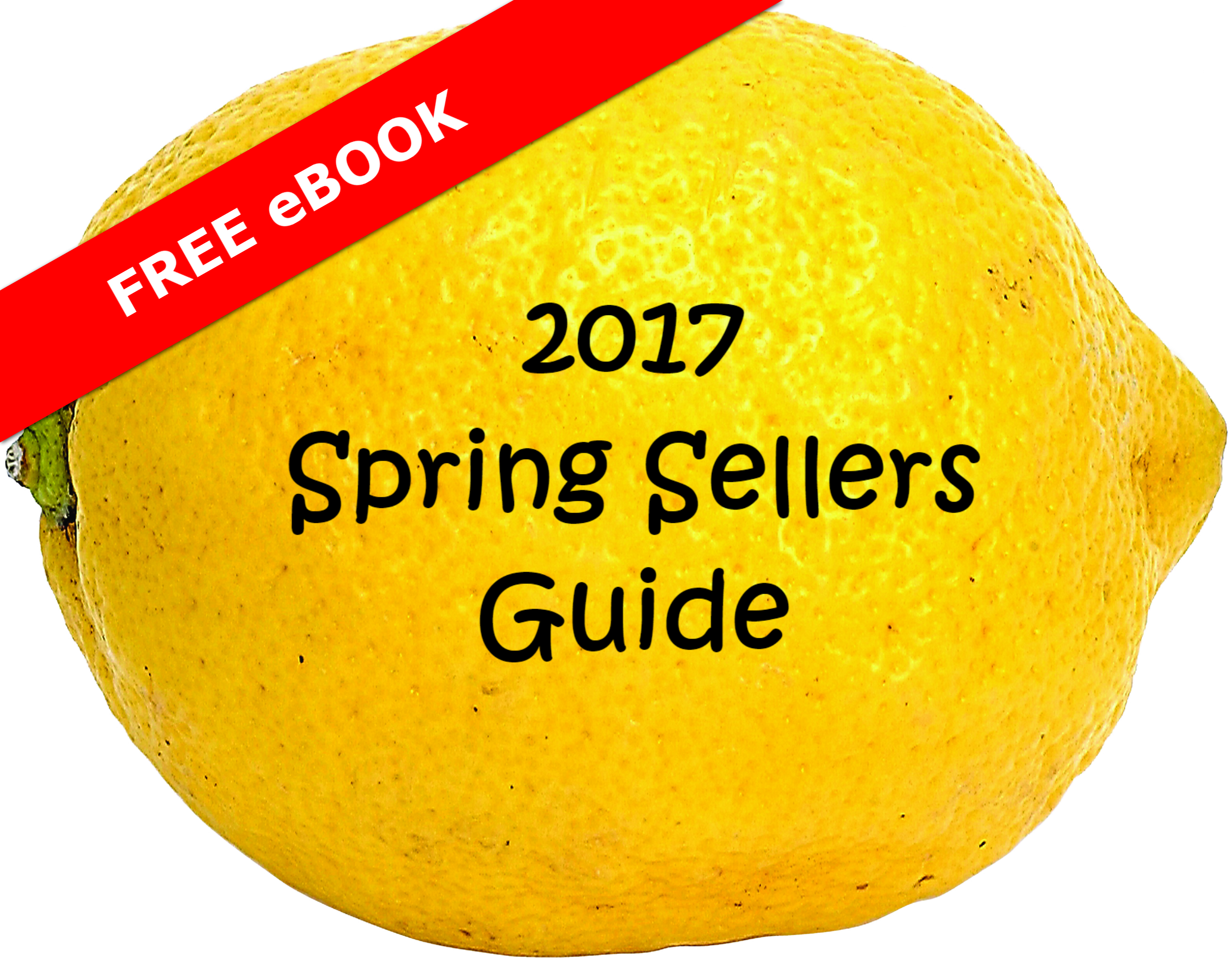 2017 Spring Sellers Guide