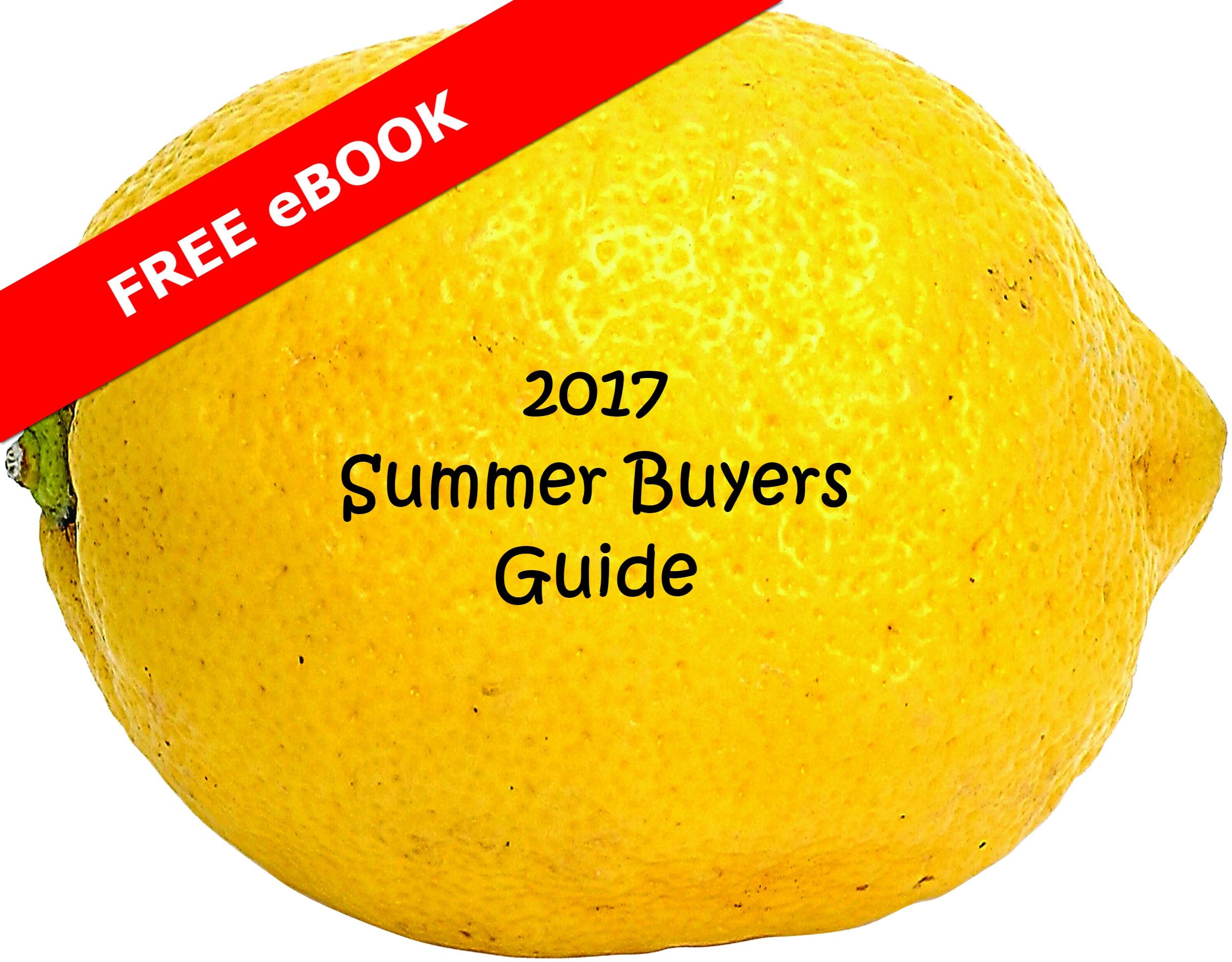 Summer buyer guide eBook