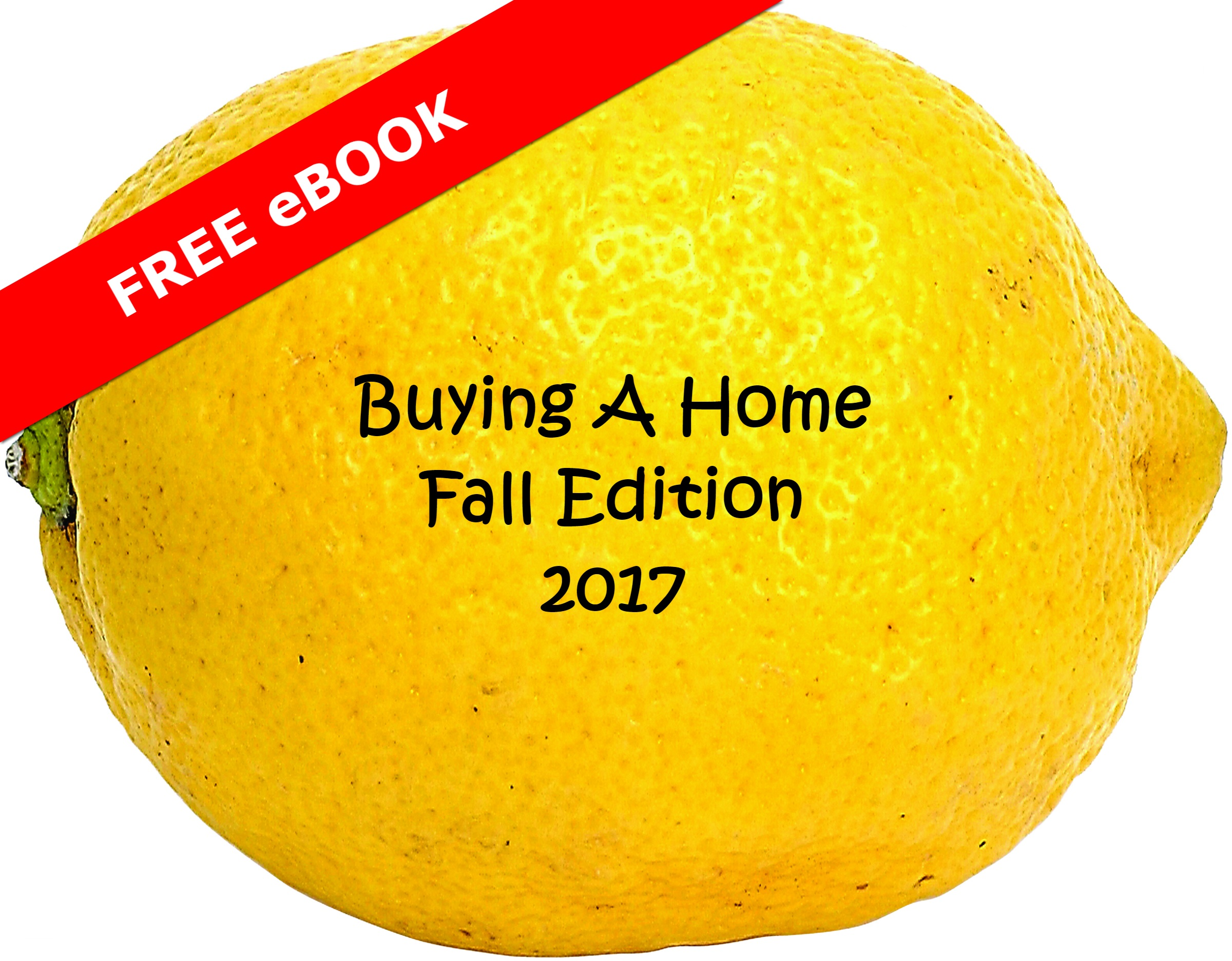 Fall buyer guide eBook