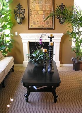 Living Room Plant Friends
