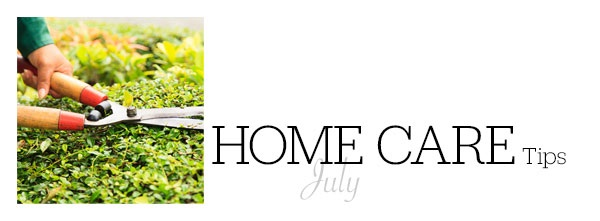 Home Care Tips July