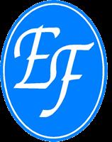 Elite Flooring Inc