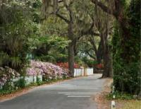 What's New - Neighborhood Newsletter