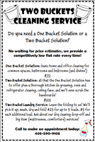 Two Buckets Cleaning Service Logo