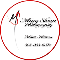 Mary Sloan Photography