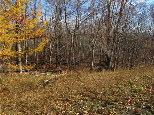 Photo of 000 State Route 28, Old Forge, NY 13420 (MLS # 172100)