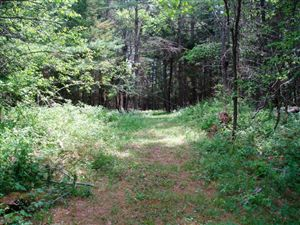Photo of 35 Big Brook Way, Long Lake, NY 12847 (MLS # 153145)