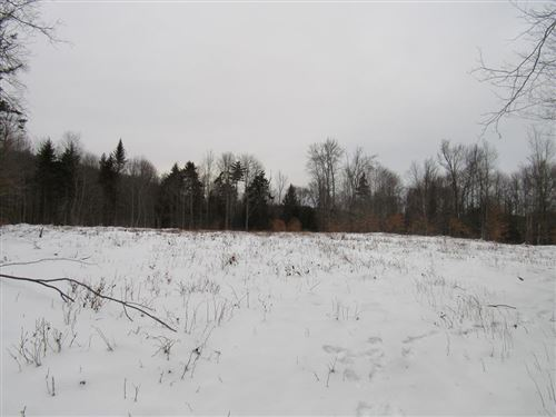 Photo of 173 Taxi Way, Old Forge, NY 13420 (MLS # 174258)