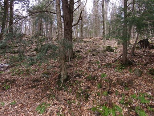 Photo of 000 Petrie Road, Old Forge, NY 13420 (MLS # 173282)