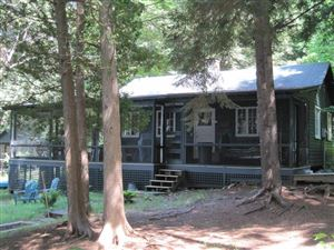 Photo of 4 Bluff Island, Tupper Lake, NY 12986 (MLS # 163403)