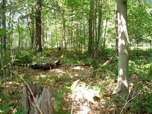 Photo of 67 Grange Park Way, Long Lake, NY 12847 (MLS # 164616)