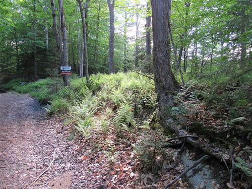 Photo of 0 Palisades Road, Old Forge, NY 13420 (MLS # 168828)