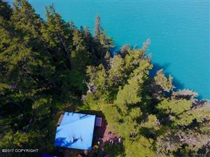 Photo of 45020 Resolute Cove, Seward, AK 99664 (MLS # 19-1007)