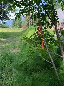 Tiny photo for L3 El Rocko Lane, Indian, AK 99540 (MLS # 19-10083)