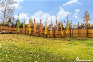 Photo of L1 Silver Spruce Circle, Anchorage, AK 99516 (MLS # 19-17125)