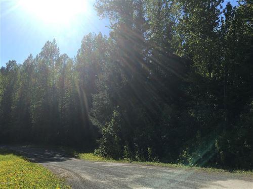 Photo of L12 White Beaver Way, Haines, AK 99827 (MLS # 20-6130)