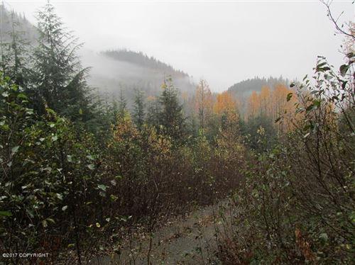 Photo of L8 White Beaver Way, Haines, AK 99827 (MLS # 20-6134)
