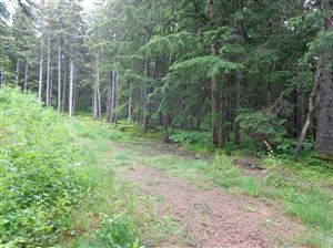 Photo of LC1 Chilkat Trail Road, Haines, AK 99827 (MLS # 17-18158)