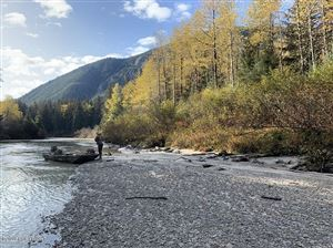 Photo of 000 Ferebee Valley, Haines, AK 99827 (MLS # 19-16186)