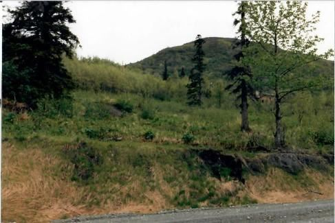 Photo of L1 Spendlove View Heights, Anchorage, AK 99516 (MLS # 21-5195)