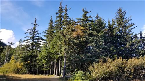 Photo of L4 BA Young Road, Haines, AK 99827 (MLS # 20-15229)