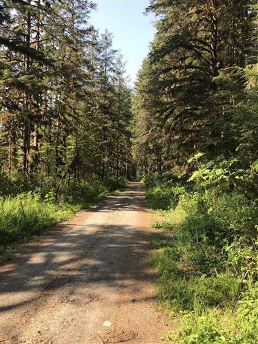 Photo of L13 Point Agassiz Highway, Petersburg, AK 99833 (MLS # 20-14368)