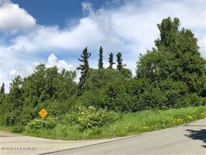 Photo for L4 B1 Ptarmigan Roost, Anchorage, AK 99516 (MLS # 18-19574)