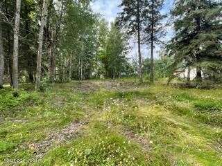 Photo of 140 N Pine Street, Anchorage, AK 99508 (MLS # 21-12630)