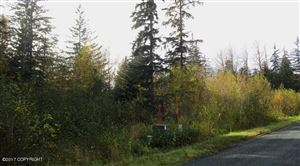 Photo of L 37 Chestnut Drive, Haines, AK 99827 (MLS # 17-13695)