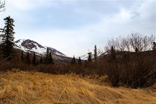 Photo of Lot 4 Pathfinder Circle, Anchorage, AK 99516 (MLS # 20-15702)