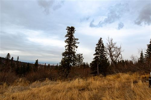 Photo of LOT 5 Pathfinder Circle, Anchorage, AK 99516 (MLS # 20-15707)