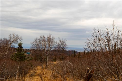 Photo of LOT 13 Trailblaze Circle, Anchorage, AK 99516 (MLS # 20-15711)