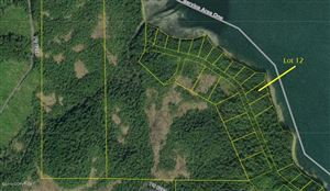 Photo of L12 Frederick Point, Petersburg, AK 99833 (MLS # 19-15742)
