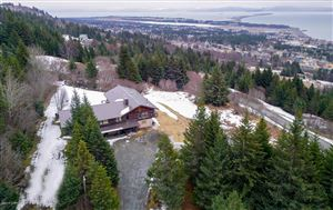 Photo of 4196 West Hill Road, Homer, AK 99603 (MLS # 19-3805)